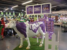 La vache milka théâtralisation